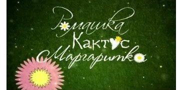 Сериал РОМАШКА, КАКТУС, МАРГАРИТКА все серии онлайн фильм на Россия 1 мелодрама